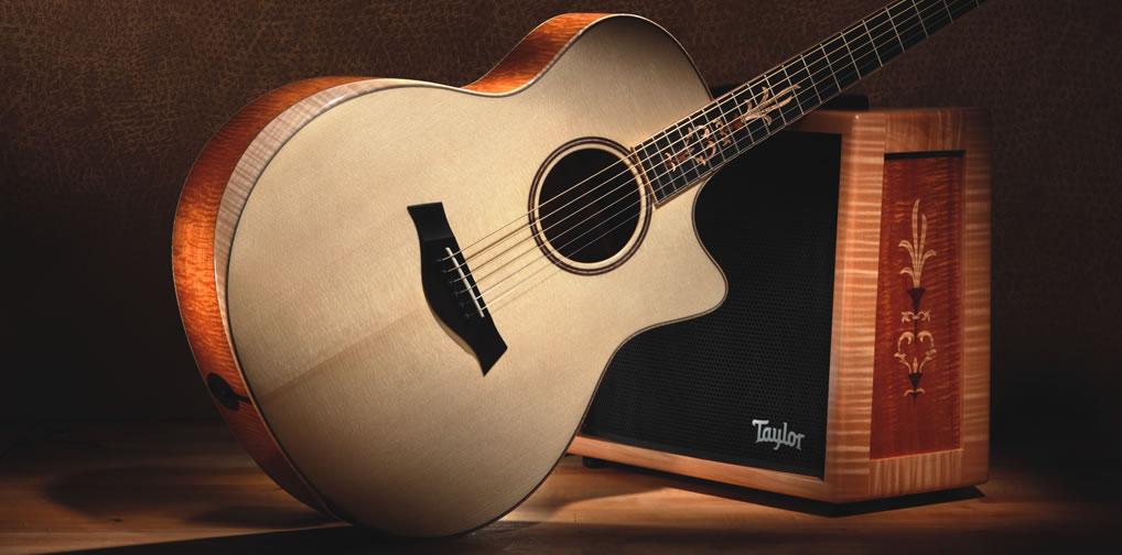 Первая 9-ти струнная гитара XXXV-9 от Taylor Guitars